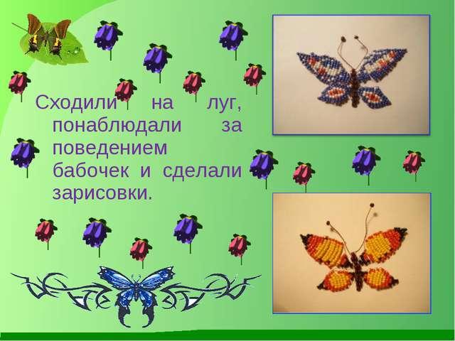 Сходили на луг, понаблюдали за поведением бабочек и сделали зарисовки.