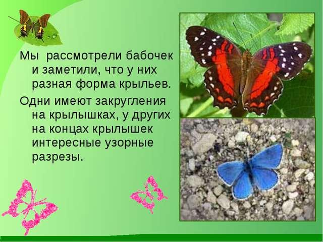 Мы рассмотрели бабочек и заметили, что у них разная форма крыльев. Одни имею...