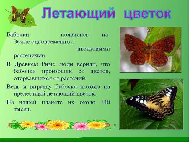 Бабочки появились на Земле одновременно с цветковыми растениями. В Древнем Ри...
