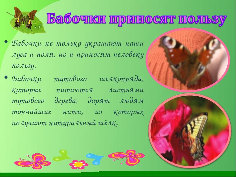 Бабочки не только украшают наши луга и поля, но и приносят человеку пользу....