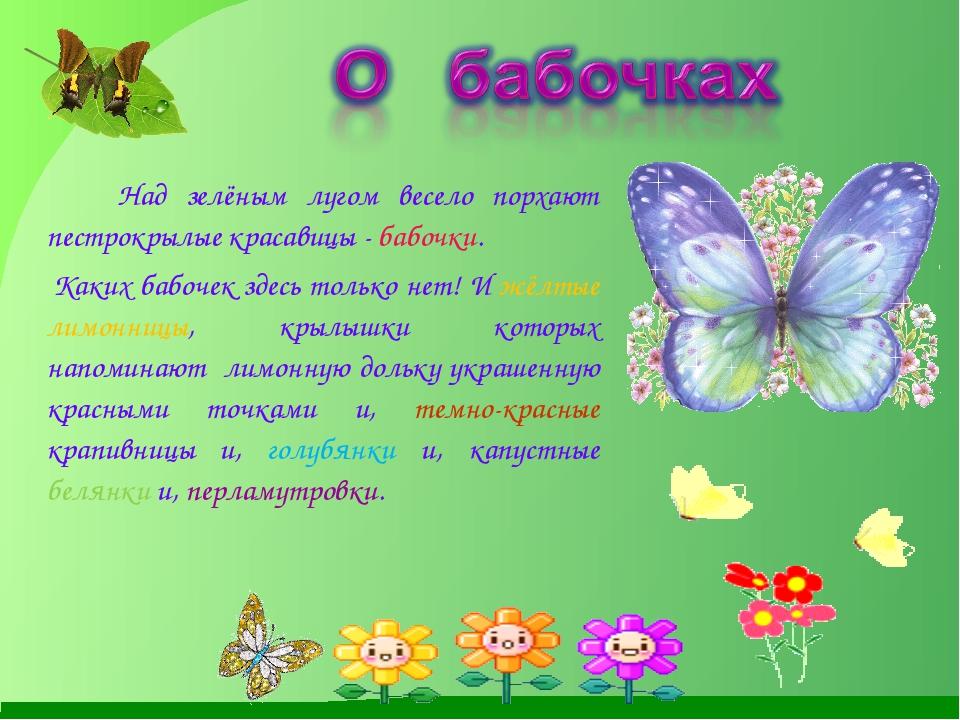 Над зелёным лугом весело порхают пестрокрылые красавицы - бабочки. Каких баб...