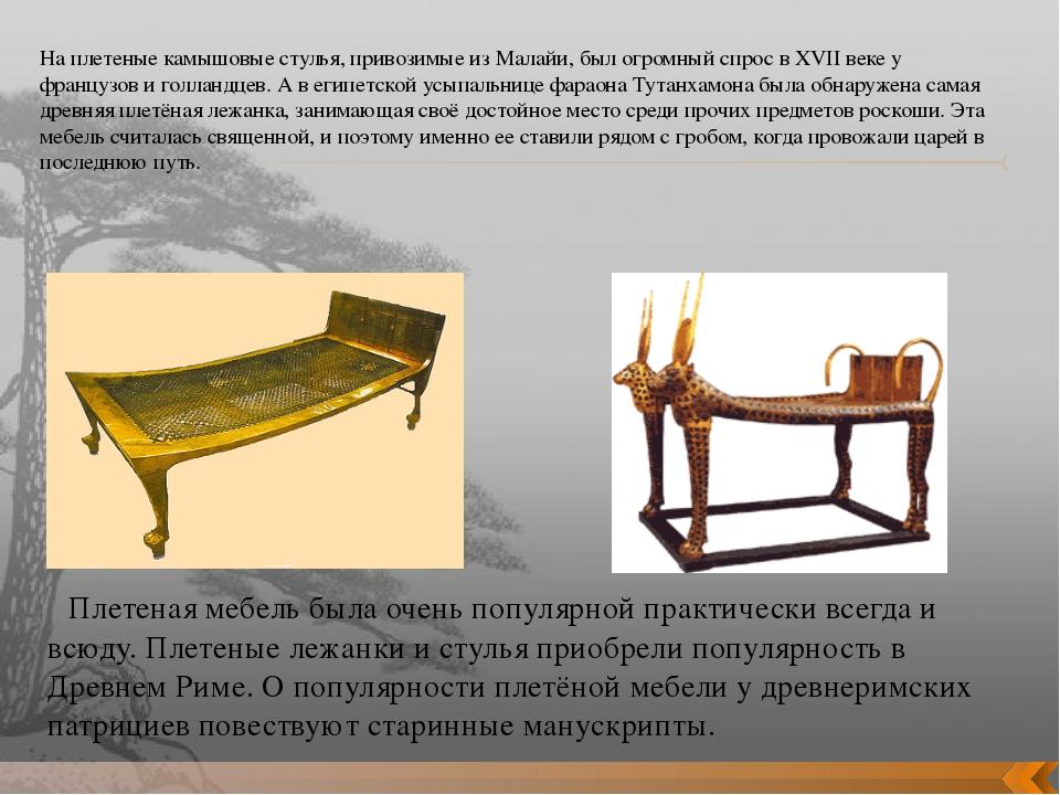 На плетеные камышовые стулья, привозимые из Малайи, был огромный спрос в XVII...
