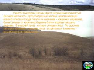 Участок Букреевы Бармы имеет необычный холмистый рельеф местности. Куполообр
