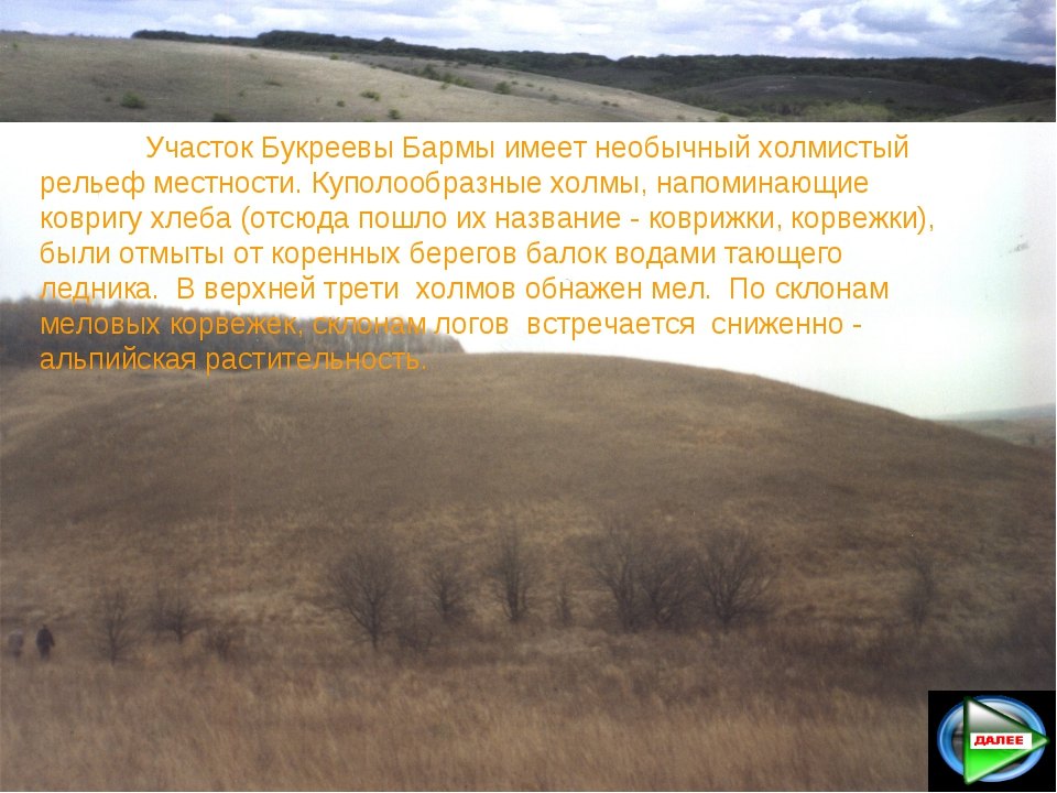 Участок Букреевы Бармы имеет необычный холмистый рельеф местности. Куполообр...