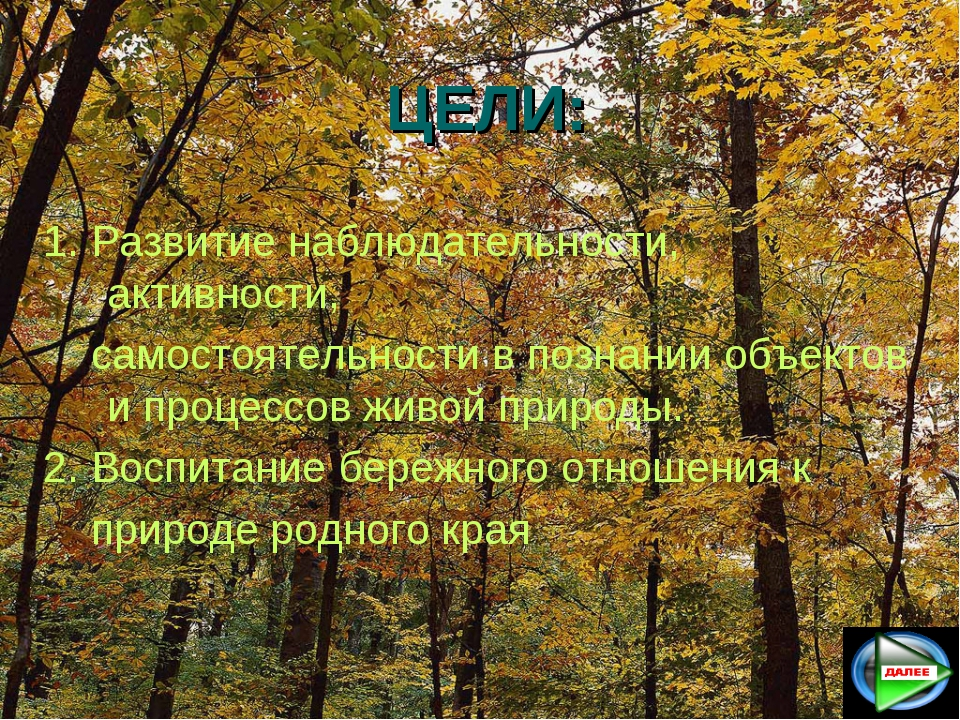 ЦЕЛИ: 1. Развитие наблюдательности, активности, самостоятельности в познании...