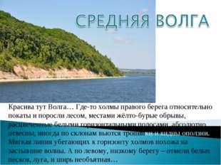 Красива тут Волга… Где-то холмы правого берега относительно покаты и поросли