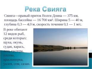 Свияга—правый приток Волги Длина —375 км, площадь бассейна — 16 700 км². Шир