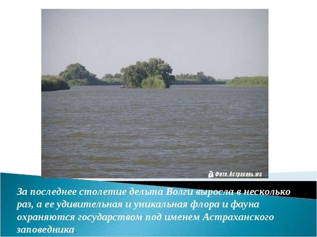 За последнее столетие дельта Волги выросла в несколько раз, а ее удивительная...