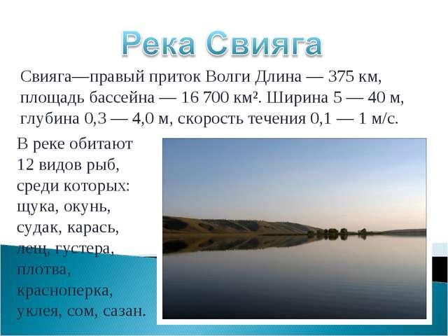 Свияга—правый приток Волги Длина —375 км, площадь бассейна — 16 700 км². Шир...