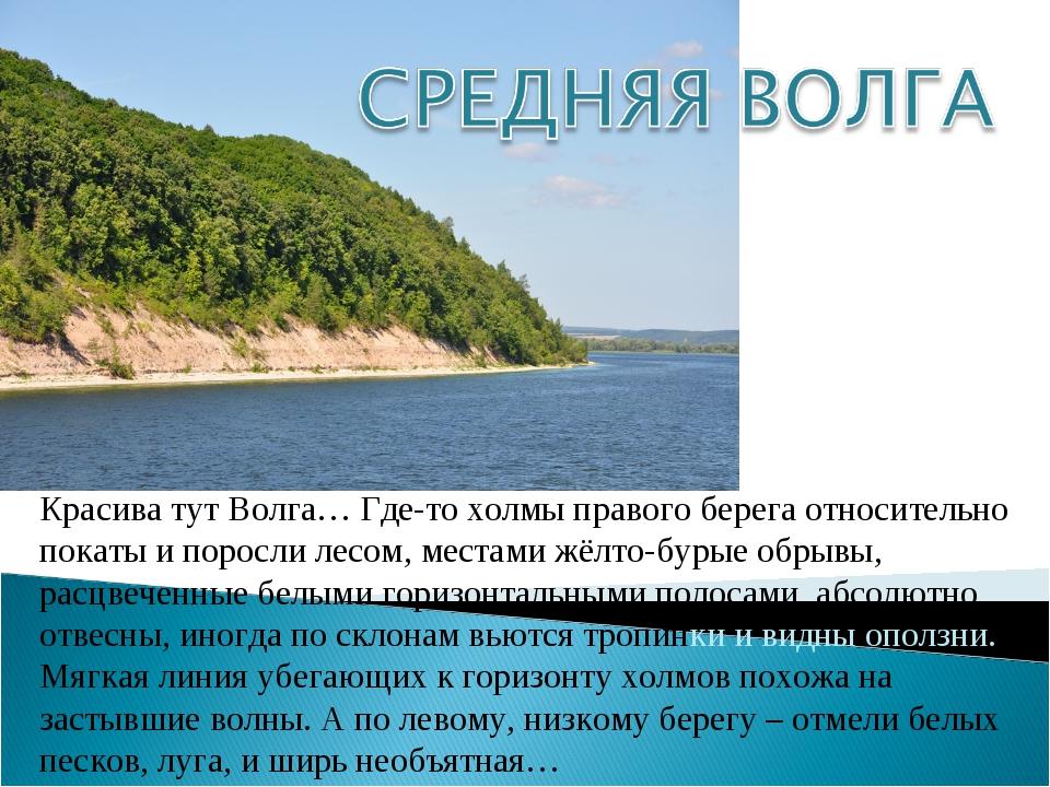 Красива тут Волга… Где-то холмы правого берега относительно покаты и поросли...