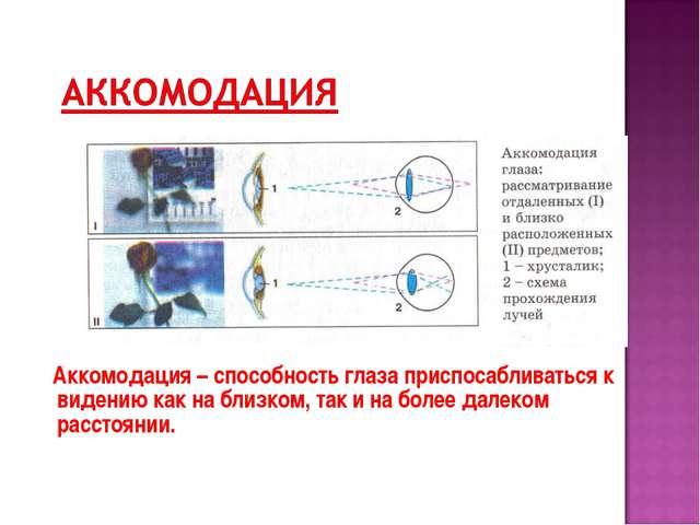Аккомодация – способность глаза приспосабливаться к видению как на близком,...