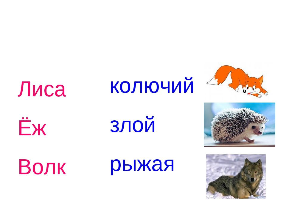 Лиса Ёж Волк колючий злой рыжая