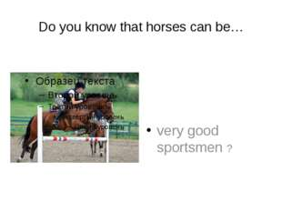Do you know that horses can be… very good sportsmen ?