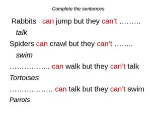 Complete the sentences Rabbits can jump but they can't ……… talk Spiders