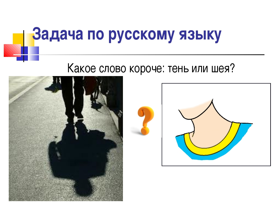 Какое слово короче: тень или шея? Задача по русскому языку