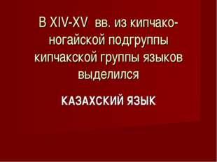 В XIV-XV вв. из кипчако-ногайской подгруппы кипчакской группы языков выделил