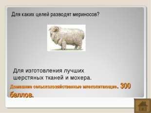 Домашние сельскохозяйственные млекопитающие. 300 баллов. Для каких целей разв