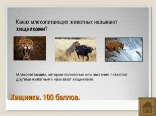 Хищники. 100 баллов. Каких млекопитающих животных называют хищниками? Млекопи