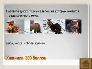 Хищники. 300 баллов Назовите диких пушных зверей, на которых охотятся ради кр