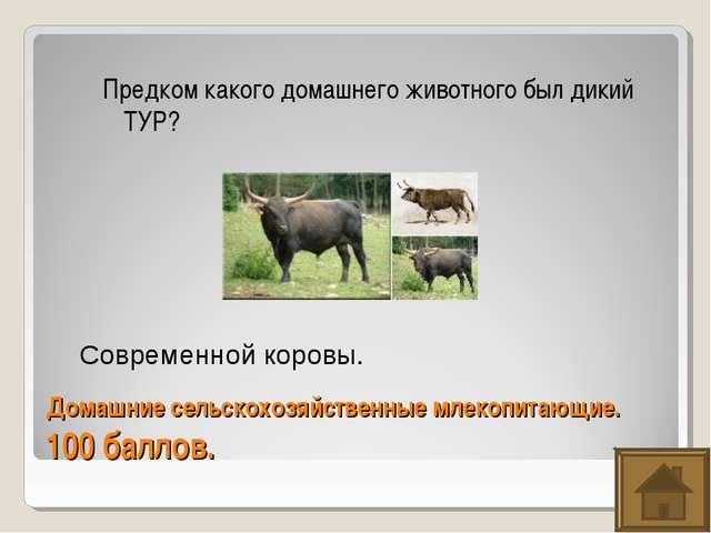 Домашние сельскохозяйственные млекопитающие. 100 баллов. Предком какого домаш...