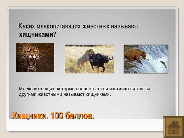 Хищники. 100 баллов. Каких млекопитающих животных называют хищниками? Млекопи...