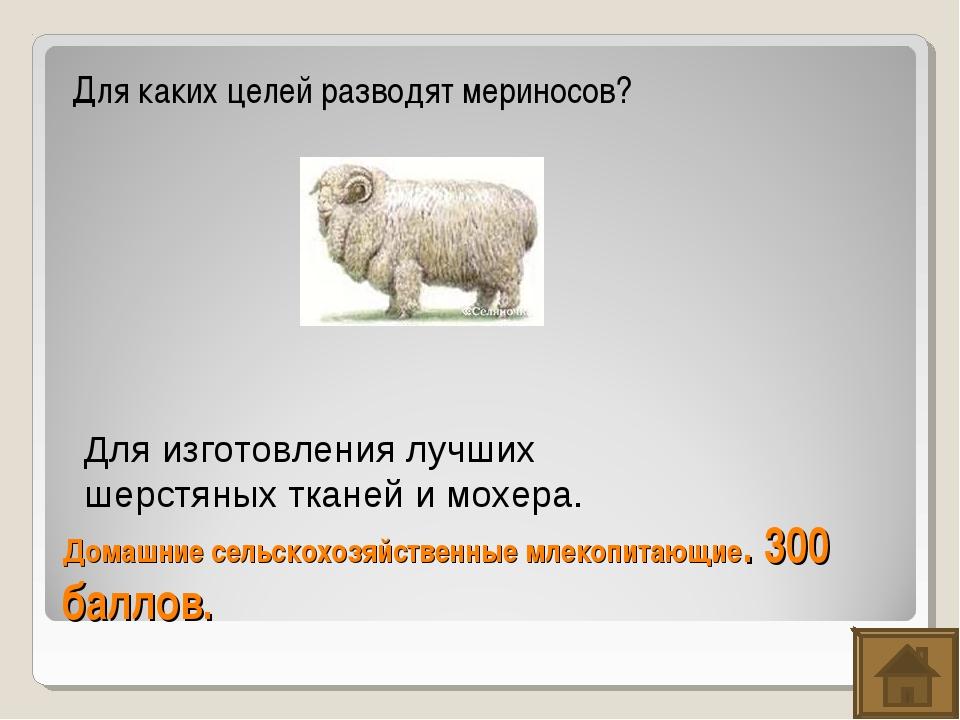 Домашние сельскохозяйственные млекопитающие. 300 баллов. Для каких целей разв...