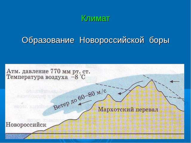 Климат Образование Новороссийской боры
