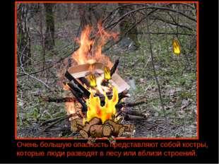 Очень большую опасность представляют собой костры, которые люди разводят в ле