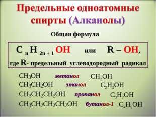 Общая формула C n H 2n + 1 OH или R – OH, где R- предельный углеводородный ра
