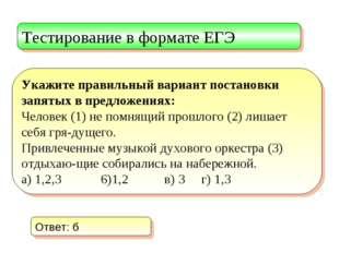 Тестирование в формате ЕГЭ Укажите правильный вариант постановки запятых в пр