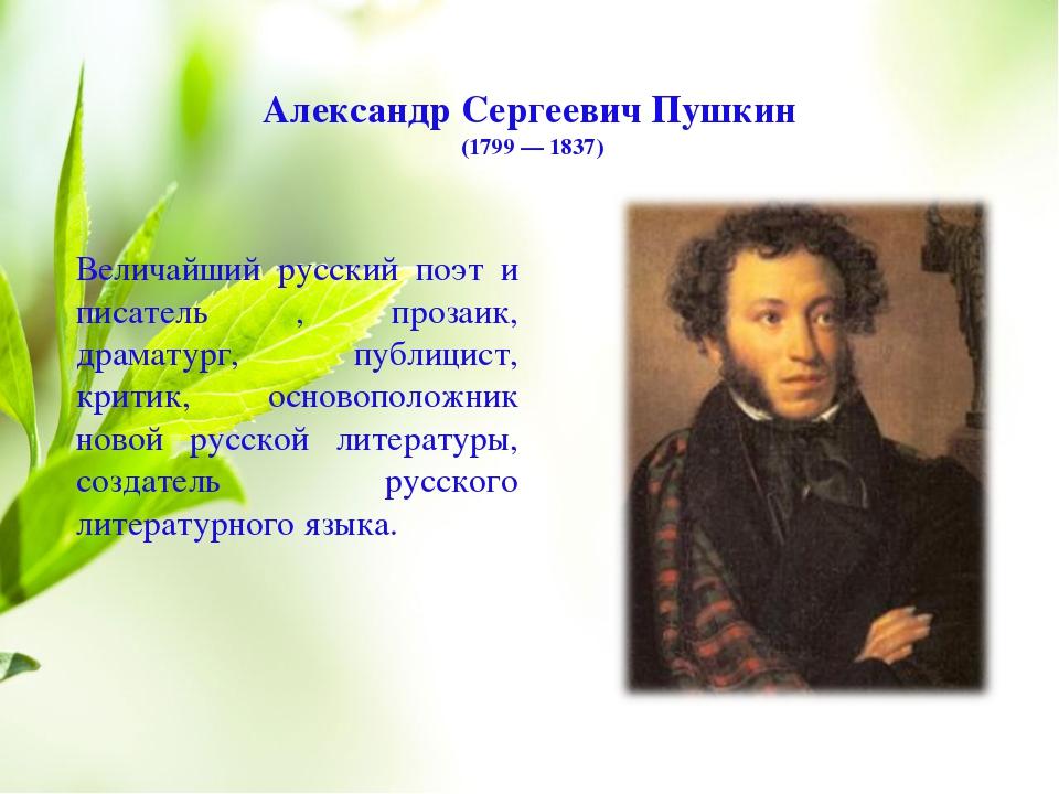 чтобы все стихи александр пушкин и фото его стоит квартира