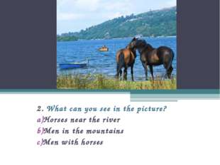 2. What can you see in the picture? Horses near the river Men in the mountain