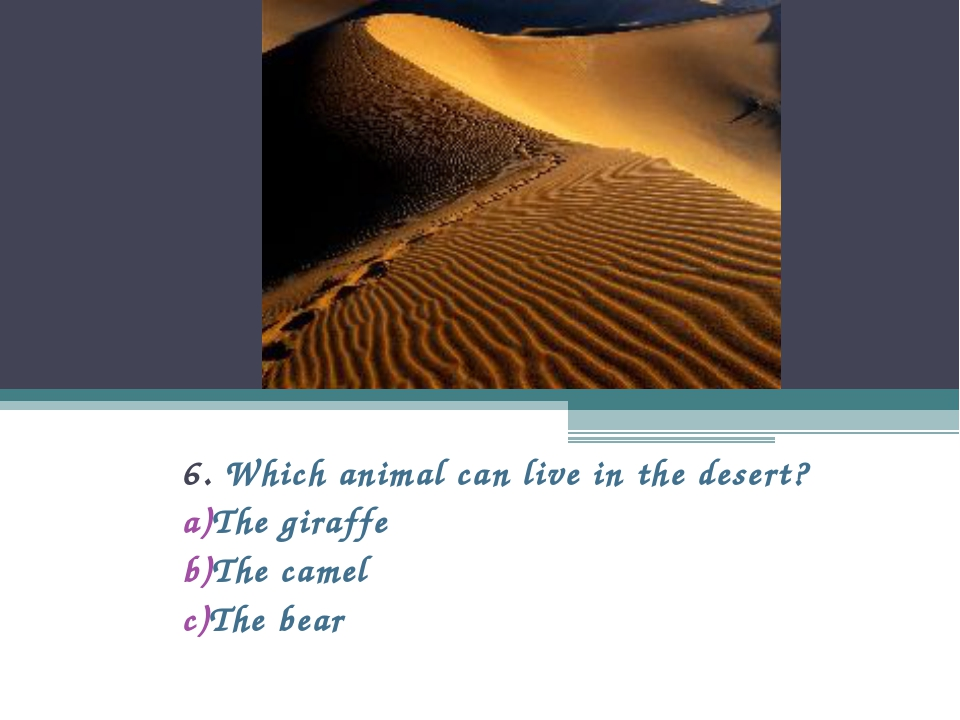 6. Which animal can live in the desert? The giraffe The camel The bear