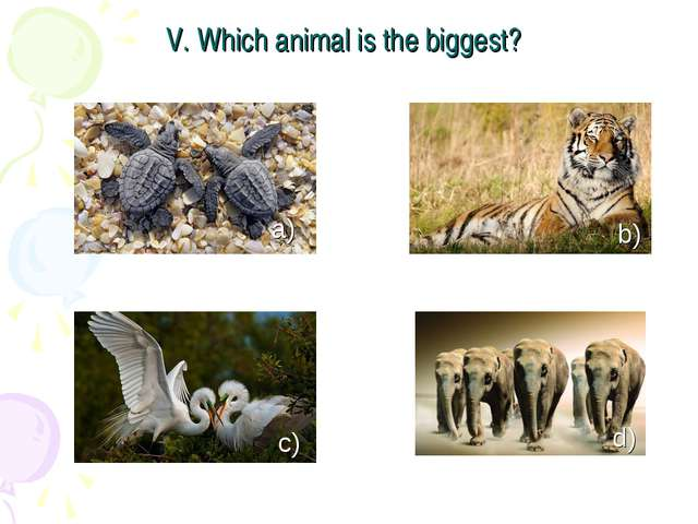 V. Which animal is the biggest? a) c) b) d)