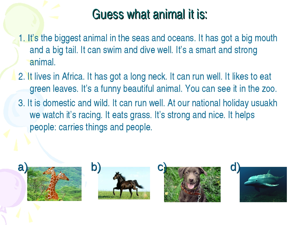 Guess what animal it is: 1. It's the biggest animal in the seas and oceans. I...