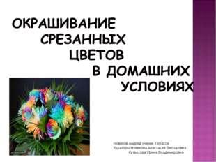 Новиков Андрей ученик 3 класса Кураторы Новикова Анастасия Викторовна Кузвесо