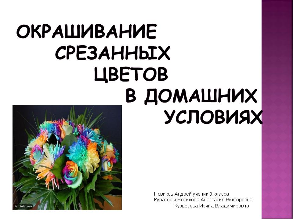Новиков Андрей ученик 3 класса Кураторы Новикова Анастасия Викторовна Кузвесо...