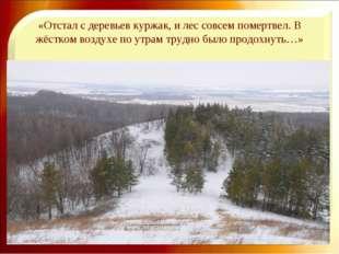 «Отстал с деревьев куржак, и лес совсем помертвел. В жёстком воздухе по утрам