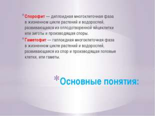 Основные понятия: Спорофит—диплоидная многоклеточная фаза вжизненном цикле