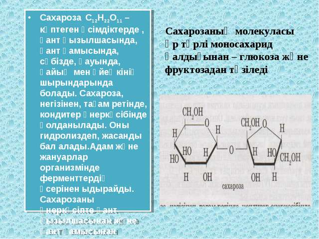 Сахароза С12Н22О11 – көптеген өсімдіктерде , қант қызылшасында, қант қамысынд...