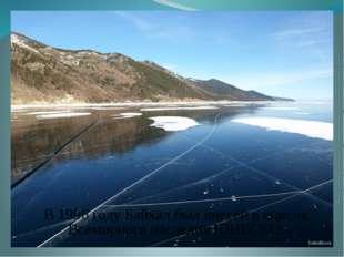 В 1996 году Байкал был внесён в список Всемирного наследия ЮНЕСКО.