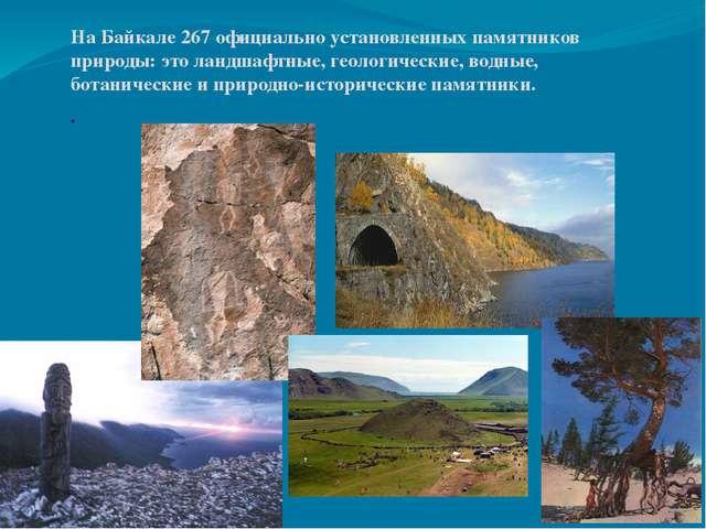 На Байкале 267 официально установленных памятников природы: это ландшафтные,...