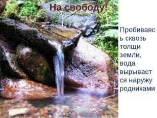 На свободу! Пробиваясь сквозь толщи земли, вода вырывается наружу родниками