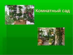 Комнатный сад