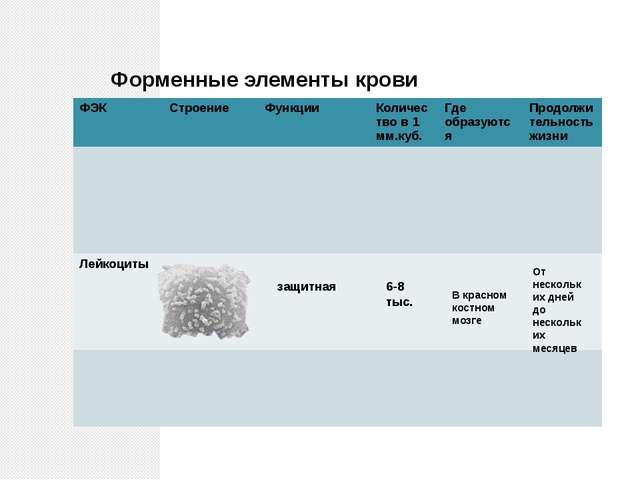 Форменные элементы крови защитная 6-8 тыс. В красном костном мозге От несколь...