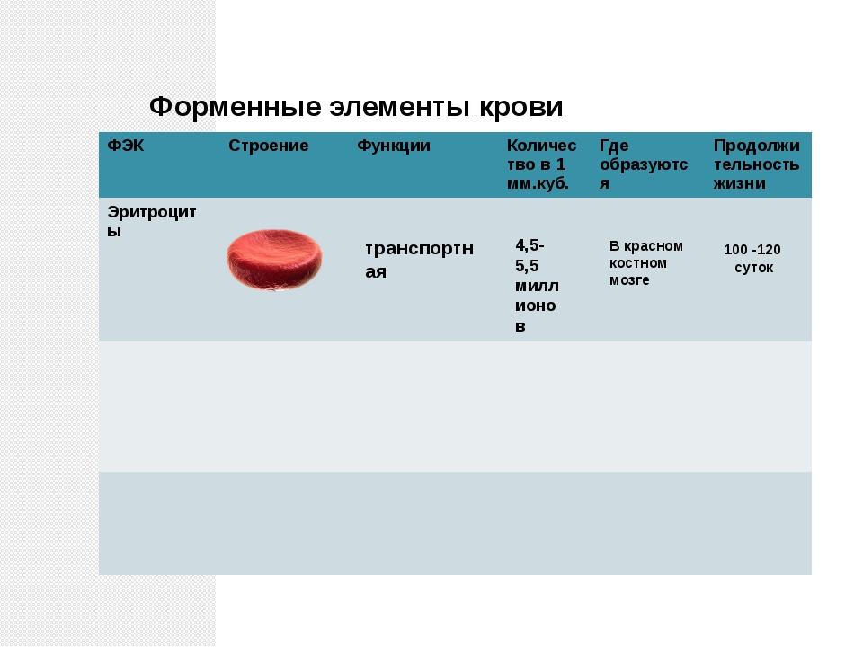 Форменные элементы крови транспортная 4,5-5,5 миллионов В красном костном моз...