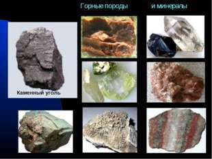 Каменный уголь Горные породы и минералы