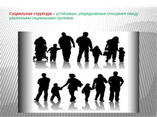 Социальная структура– устойчивые, упорядоченные отношения между различными с