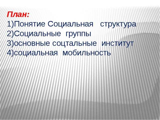 План: 1)Понятие Социальная структура 2)Социальные группы 3)основные соцтальны...