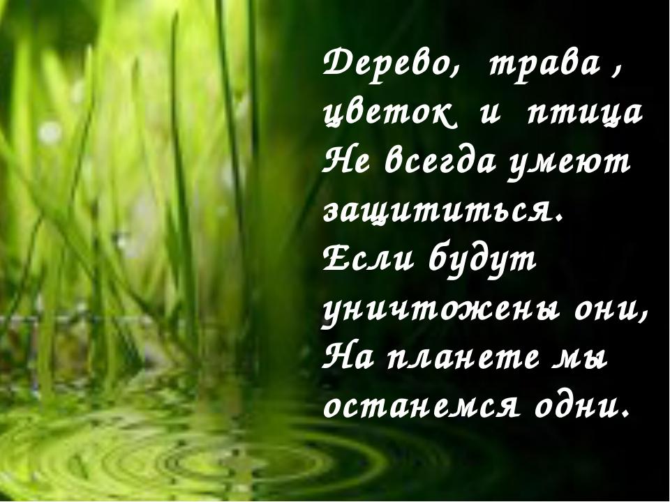Дерево, трава , цветок и птица Не всегда умеют защититься. Если будут уничтож...